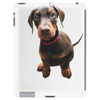 Introducing Dolly Doberman Tablet (vertical)