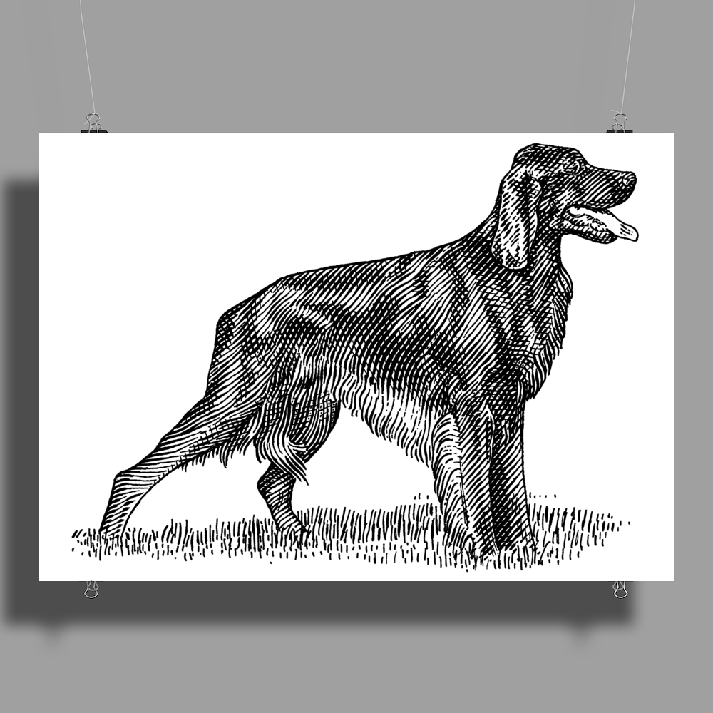 Irish Setter Dog Breed Poster Print (Landscape)