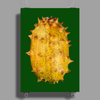 Kiwano dragon fruit Poster Print (Portrait)