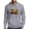 Lazy Grizzly Bear Painted Picture Mens Hoodie