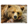 Lazy Grizzly Bear Painted Picture Tablet (horizontal)