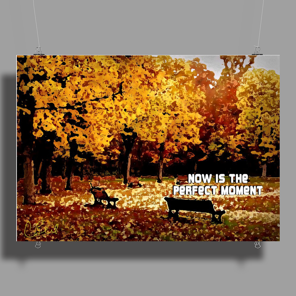 Now is the Perfect Moment Poster Print (Landscape)