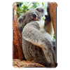 Outback Koala friend and family to the Drop Bear Tablet (vertical)