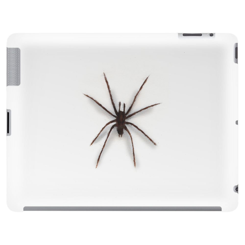 Painted spider Tablet