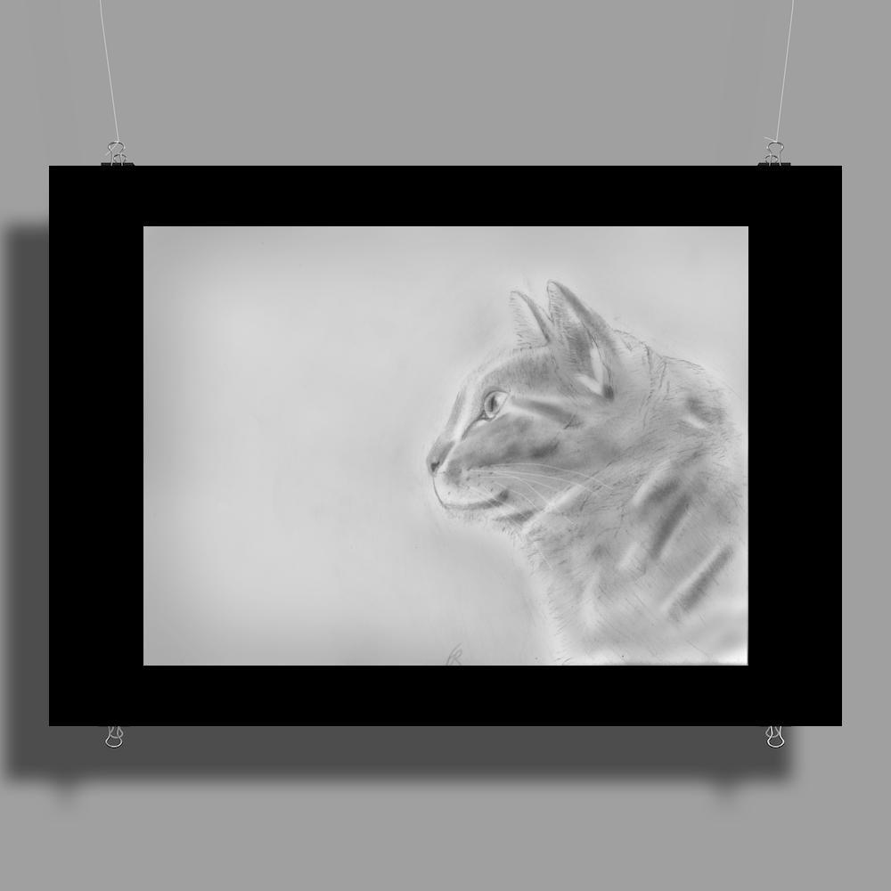 Pencil cat Poster Print (Landscape)