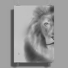 Pencil lion Poster Print (Portrait)