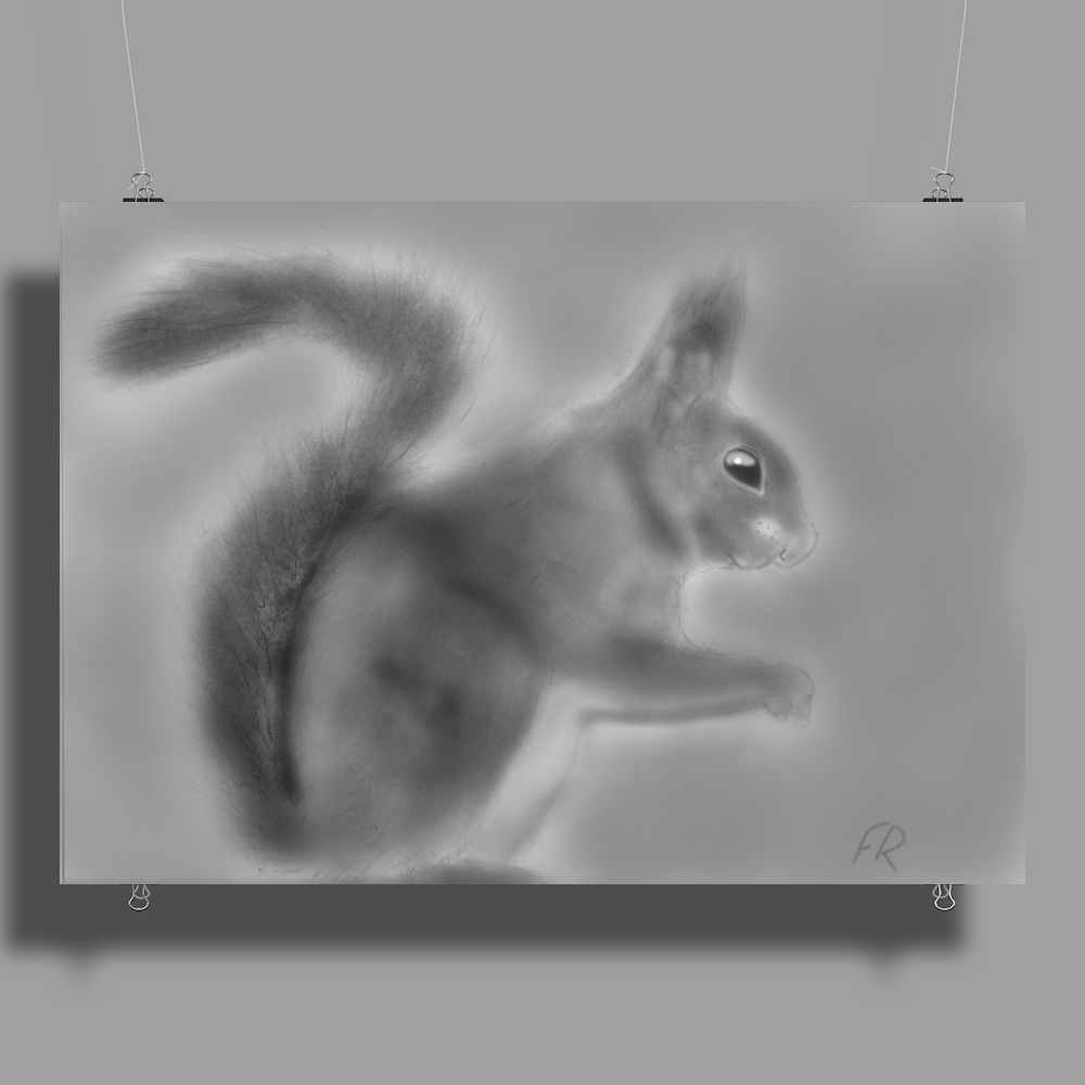 Pencil squirrel Poster Print (Landscape)