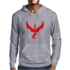 Pokemon Go Team Valor Mens Hoodie