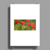 Poppy Field Poster Print (Portrait)