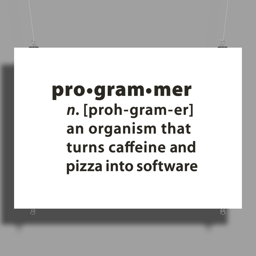 Programmer dictionary definition Poster Print (Landscape)