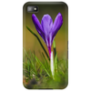 purple crocus springtime lilac flower Phone Case