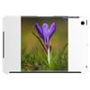 purple crocus springtime lilac flower Tablet