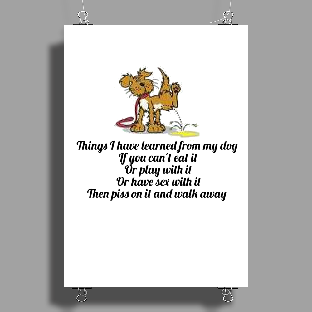 SATIRE HUMOUR FUNNY THINGS I HAVE LEARNED FROM MY DOG IF YOU CANT EAT IT OR PLAY WITH IT OR HAVE SEX Poster Print (Portrait)