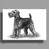 Scottish Terrier, Dog Breed Illustration Poster Print (Landscape)