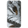 Squirrel preparing for winter. Phone Case