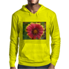 Sunburst Gaillardia Close Up Mens Hoodie