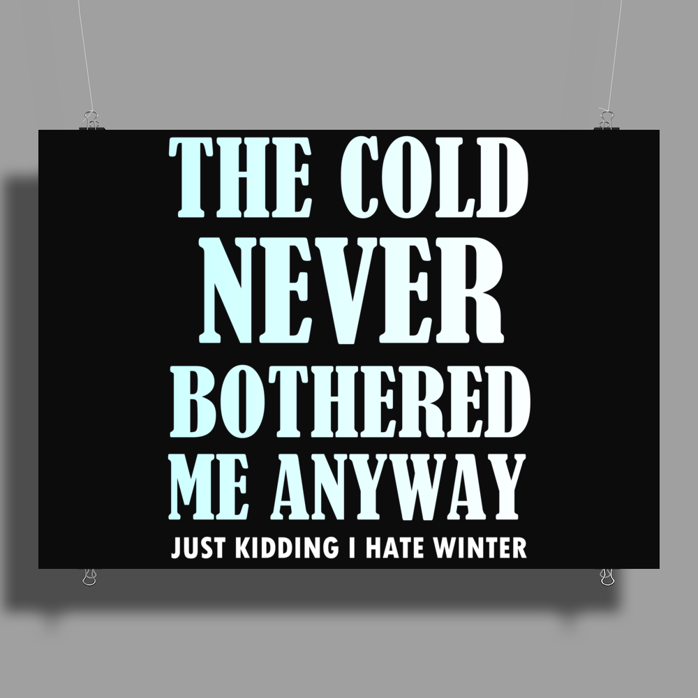 THE COLD NEVER BOTHERED ME ANYWAY Poster Print (Landscape)