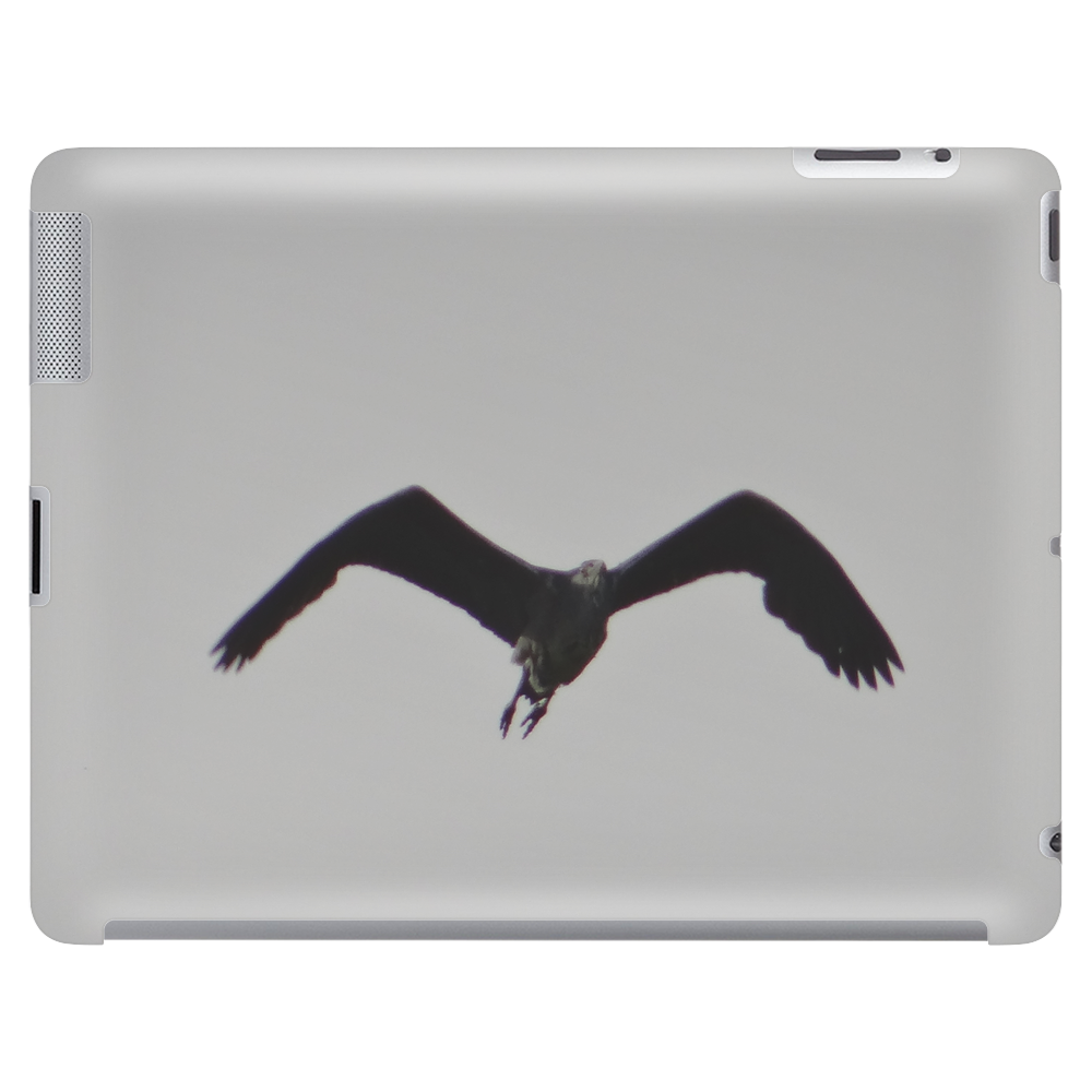 The flying eagle Tablet