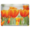 Tulip - Group of Orange Tablet
