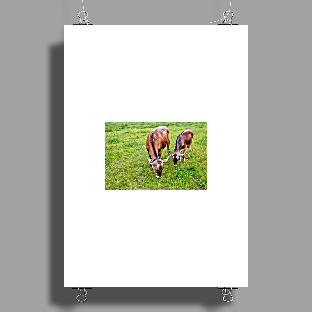 Two Cows Poster Print (Portrait)