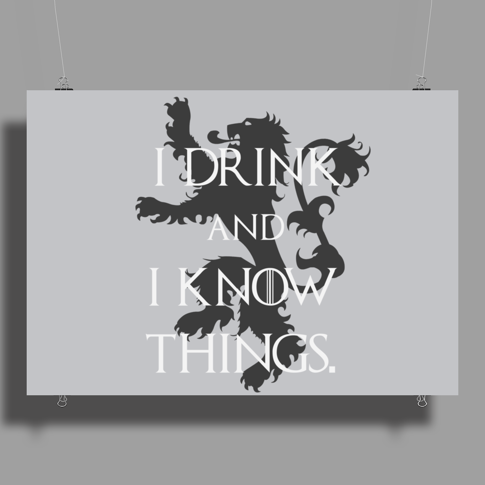 TYRION LANNISTER GAME OF THRONES DRINK AND I KNOW THINGS Poster Print (Landscape)
