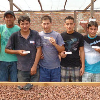 cacao workers in Cajamarca, Peru