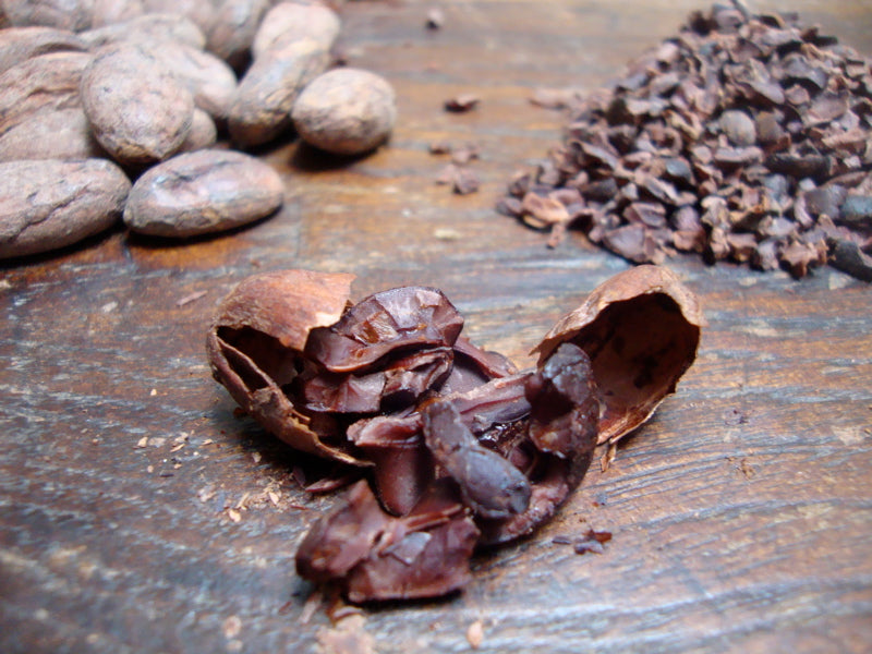 cacao beans rosted and nibs