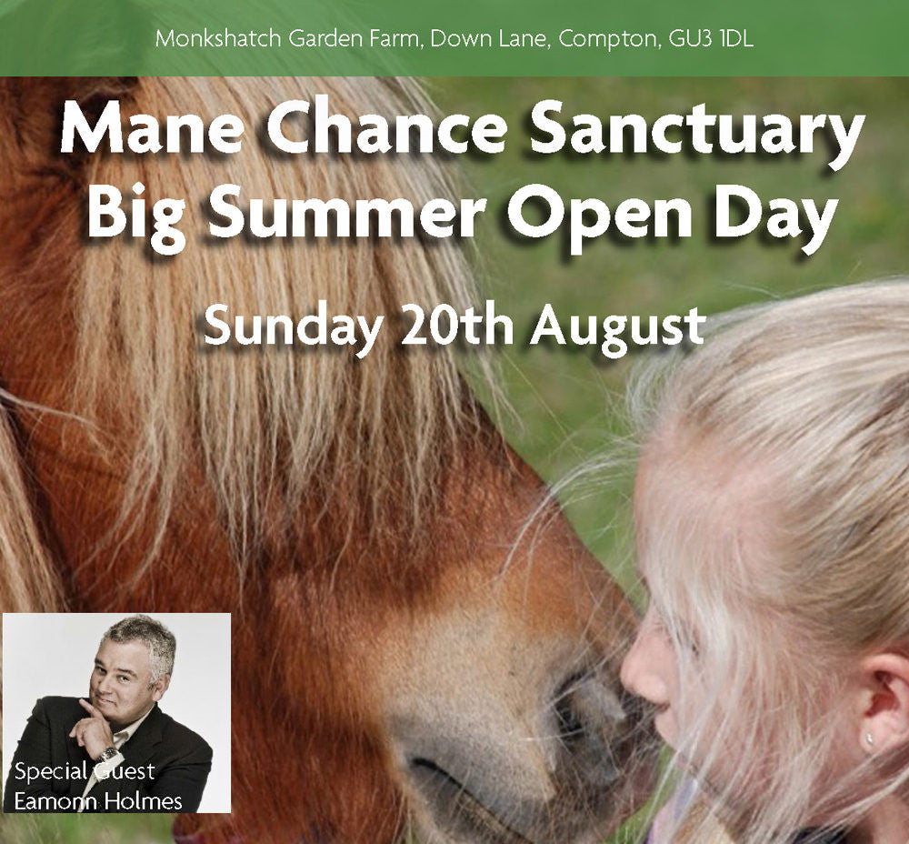 Mane Chance Sanctuary Big Summer Open Day