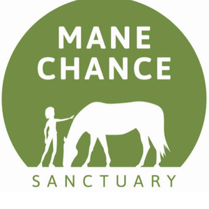 MANECHANCESANCTUARY