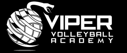 Viper Volleyball Academy