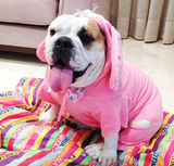Easter Bunny Costume for Pets