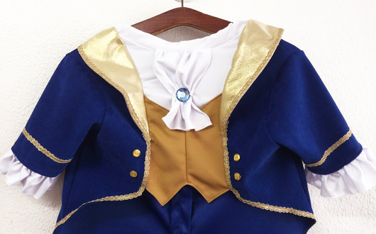 ... Beauty and the Beast - The Beast Costume for Pets & Uauh Dogs Custom Costumes