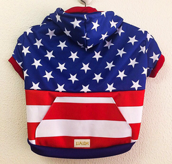 American Flag Hoodie. Choose your size.