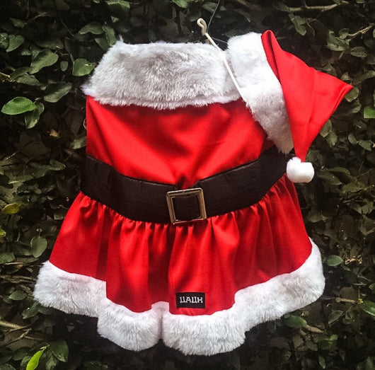 Mrs Santa Claus Costume. Choose your size.