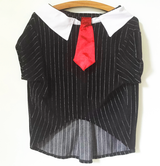 "Suit ""Pinstriped with Tie"" for Pets"
