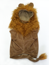 Animal Costume - Lion