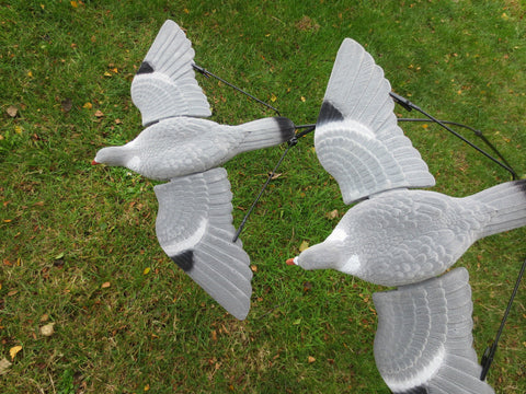 3 X PIGEON FLYING DECOY BOUNCER WITH QUALITY CROCODILE GRIP WING SPREADERS