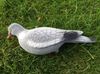 12 x Flocked Full Body Pigeons Shooting Decoys with pegs and free net