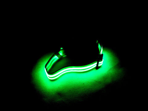 FLASHING DOG COLLAR - Woodlands Enterprises Ltd