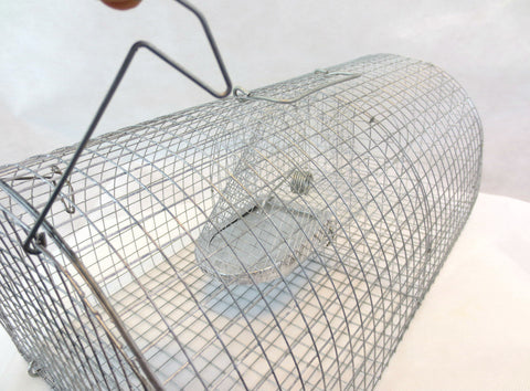 Multi-Catch Rat/Mouse Rodent Cage Trap