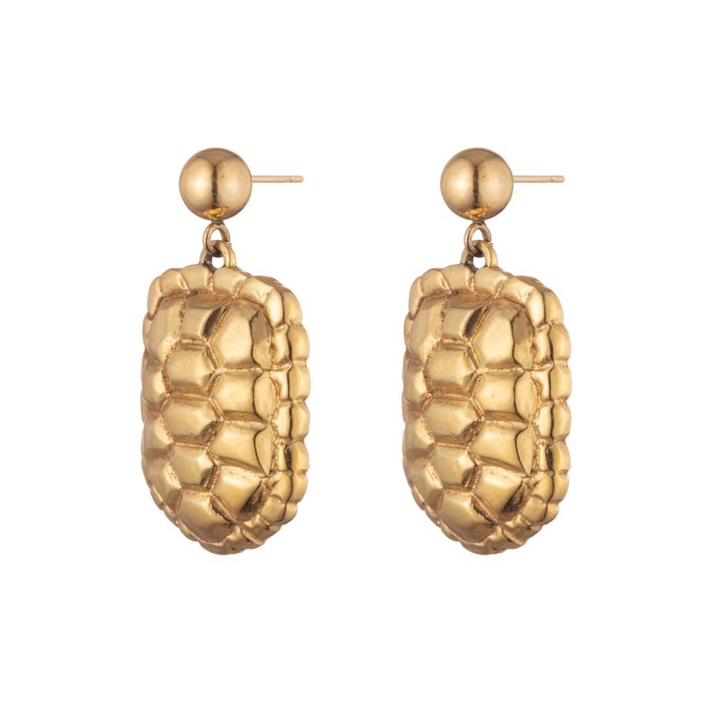 Dalasini Sahel Gold Tortoise Shell Earrings Front