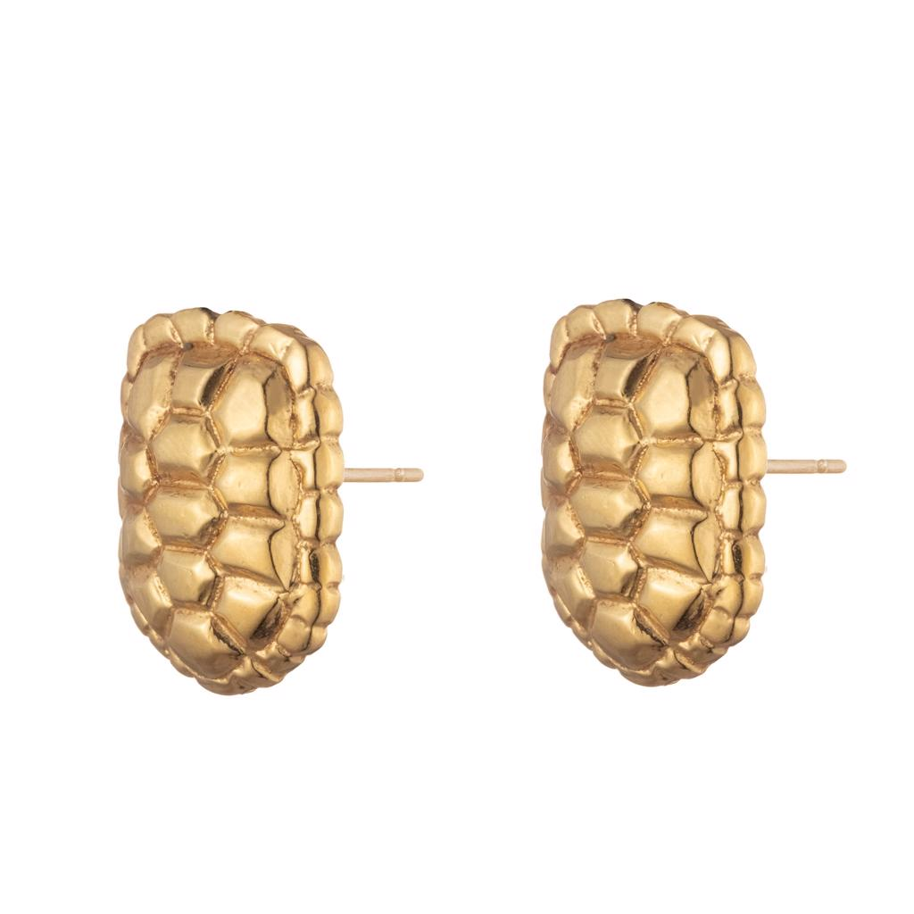 Dalasini Sahel Gold Tortoise Shell Stud Earrings Front