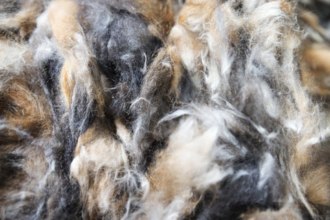 Possum fur fibre from Basically Bush, New Zealand