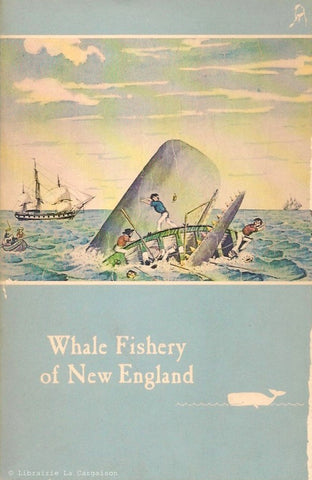 COLLECTIF. Whale Fishery of New England. An account, with illustrations and some interesting and amusing anecdotes, of the rise and fall of an industry which has made New England famous throughout the world.