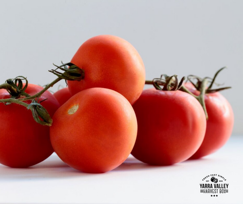 Tomatoes 1kg