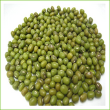 Sprout Master Organic Mung Beans - 1kg