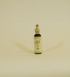 Bach Flower Remedies Pine - 20ml