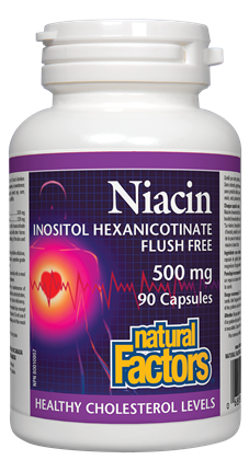 Natural Factors Niacin Flush Free 500mg - 90 Capsules