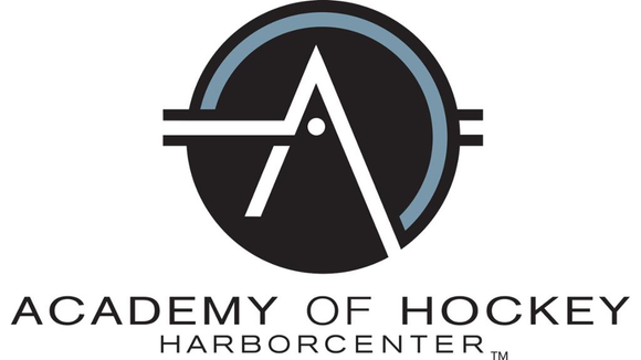 Academy of Hockey
