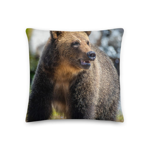 Throw & Accent Pillows - Miscellaneous
